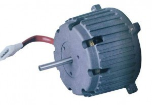 sp80-MOTOR-PICTURE-1